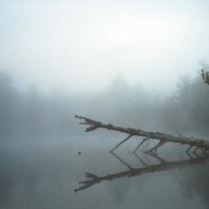 fog_arbuckle